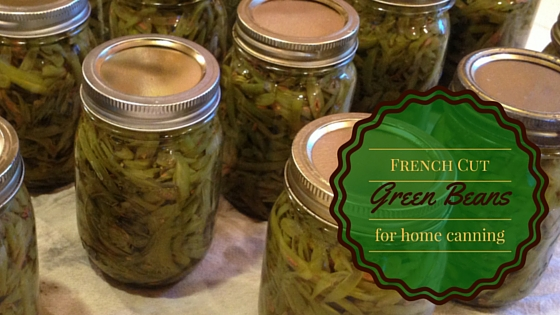 French Cut Green Beans–Quick and Easy