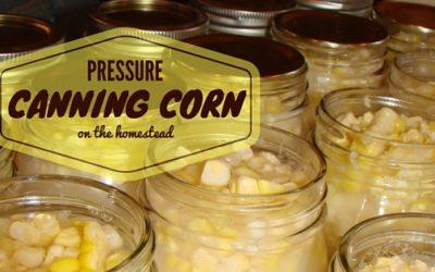 Pressure Canning Corn