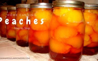 Home Canned Peaches