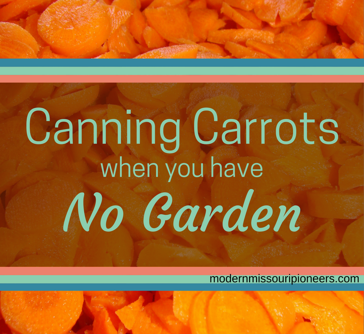 Canning Carrots Without A Garden