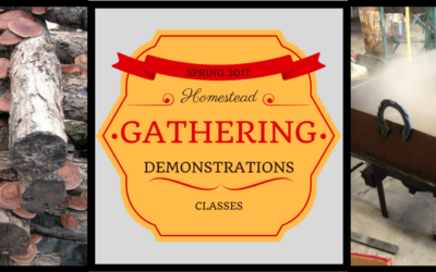 More Presenters for the Spring Gathering!
