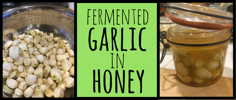 Fermented Garlic in Honey