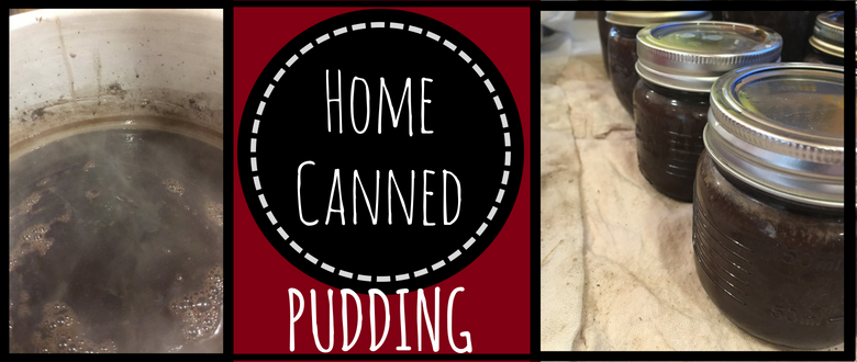 Home Canned Pudding!