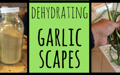 Garlic Scape Powder